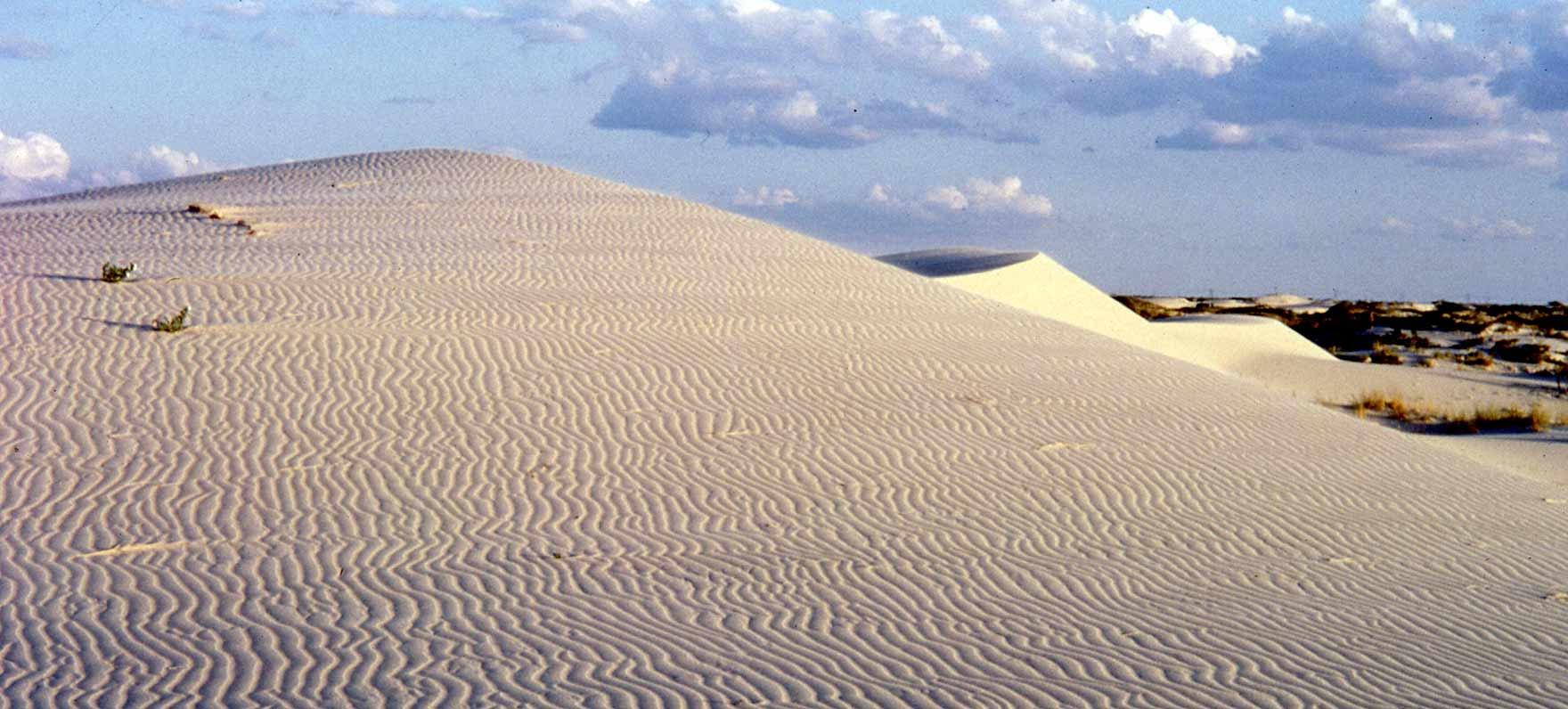 Monahan's Sand Dunes