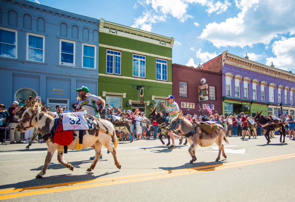 Burro races in Leadville Colorado's attitude with Altitude fun and unusual activities