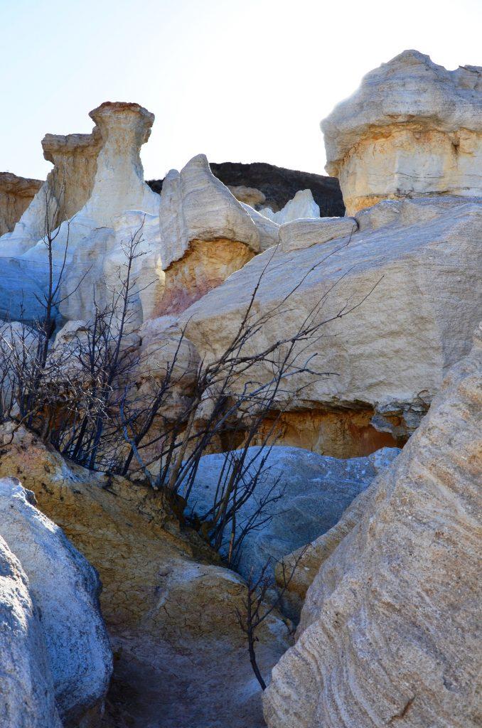 Indian Paint Mines Calhan Colorado31 Photo by Danette Ulrich