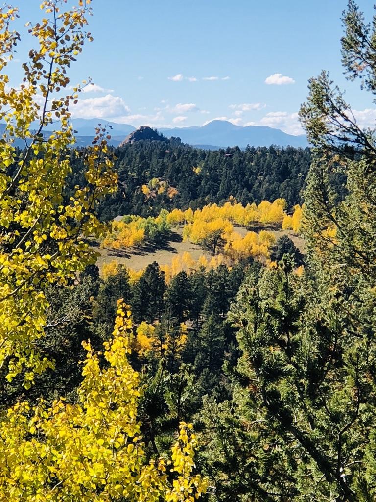 Fall Colors Teller County Colorado