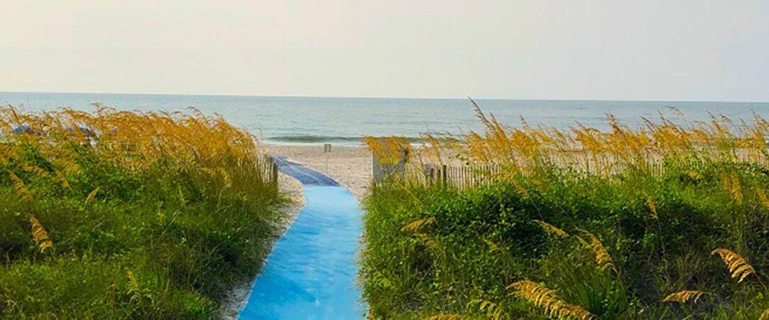 Coastal Islands of South Carolina
