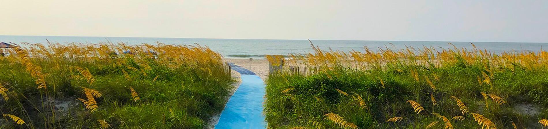 coastal beaches of South Carolina